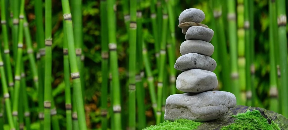 Ideas fáciles para el jardín. 0